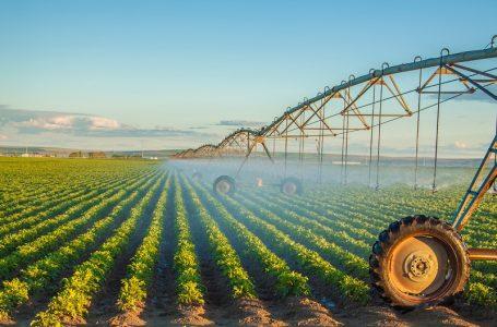 Evita riesgos en tu producción: QualityLab entrega análisis completos de suelos y aguas