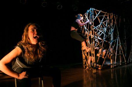 «Achawal Domo Che» culmina ciclo gratuito de teatro en Talca