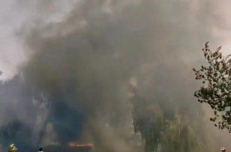Declaran alerta roja en Talca por incendio forestal