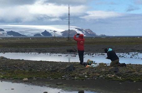Investigadores maulinos participan en expedición científica en la Antártica