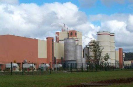 Justicia chilena acoge el recurso de reclamación de Celulosa Arauco rebajando $1.400 millones la multa por contaminación de un río.