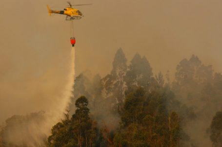 Director nacional de Conaf señala que el incendio de la Reserva Radal 7 Tazas es el más grande de la temporada