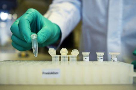 Científicos descubren defensa inmunológica contra el coronavirus COVID-19