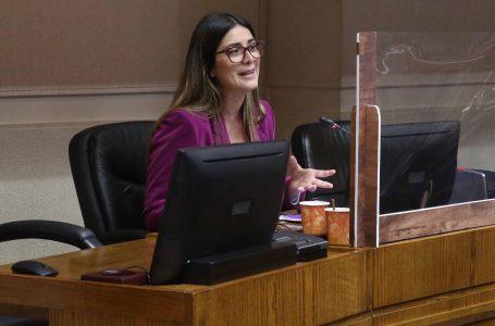 Andrea Camargo expuso en el Congreso sobre violencia de género en pandemia