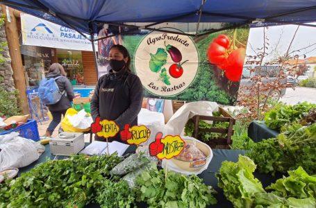 """¿Cuál es tu fruta y verdura preferida? Llaman a votar por mejor """"dúo saludable"""" del Maule"""