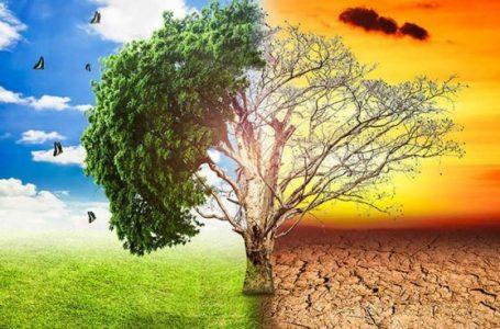Académico advierte que el cambio climático causaría más daños a los seres humanos que la pandemia por Coronavirus