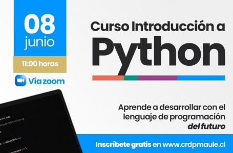 CRDP Maule imparte curso para que pymes y estudiantes apliquen el lenguaje de programación en sus proyectos digitales